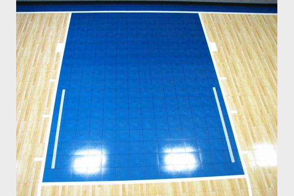 Home Gym Courts 7