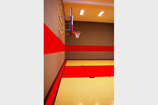 Home Gym Courts 11