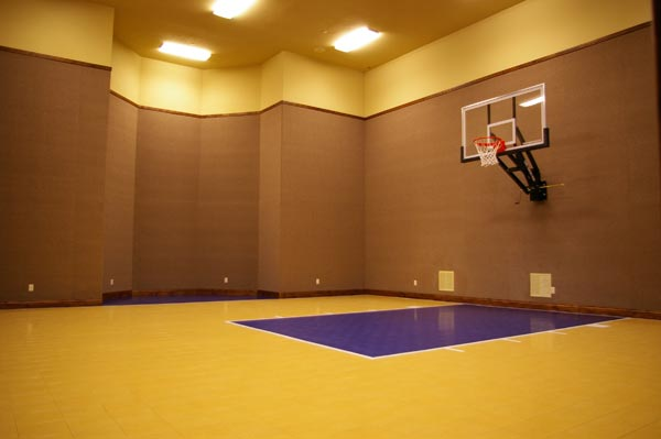 Home Gym Courts 14
